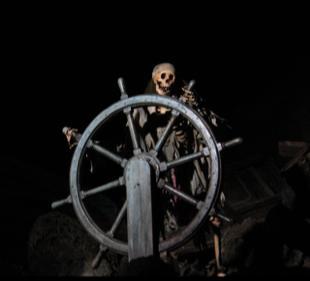 pirate5150