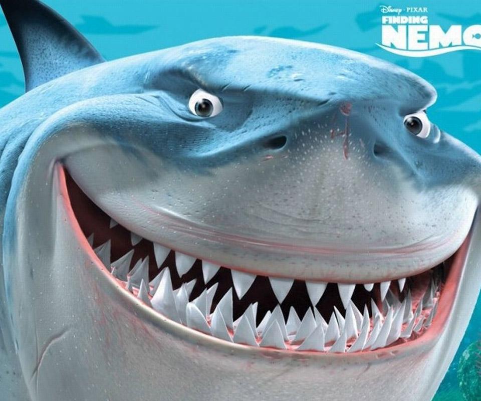 Sharkgrrl19